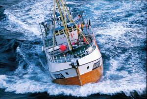 Fiskebåt sep